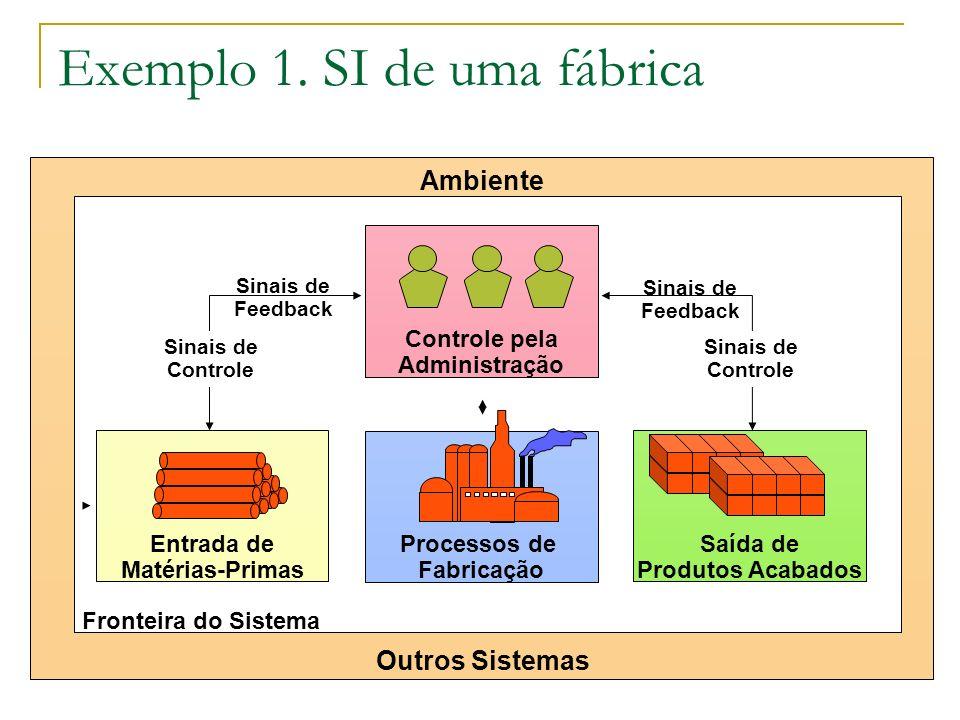 Exemplo 1. SI de uma fábrica Processos de Fabricação Entrada de Matérias-Primas Saída de Produtos Acabados Ambiente Outros Sistemas Controle pela Admi
