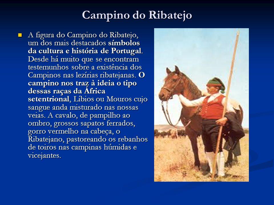 Campino do Ribatejo A figura do Campino do Ribatejo, um dos mais destacados símbolos da cultura e história de Portugal. Desde há muito que se encontra