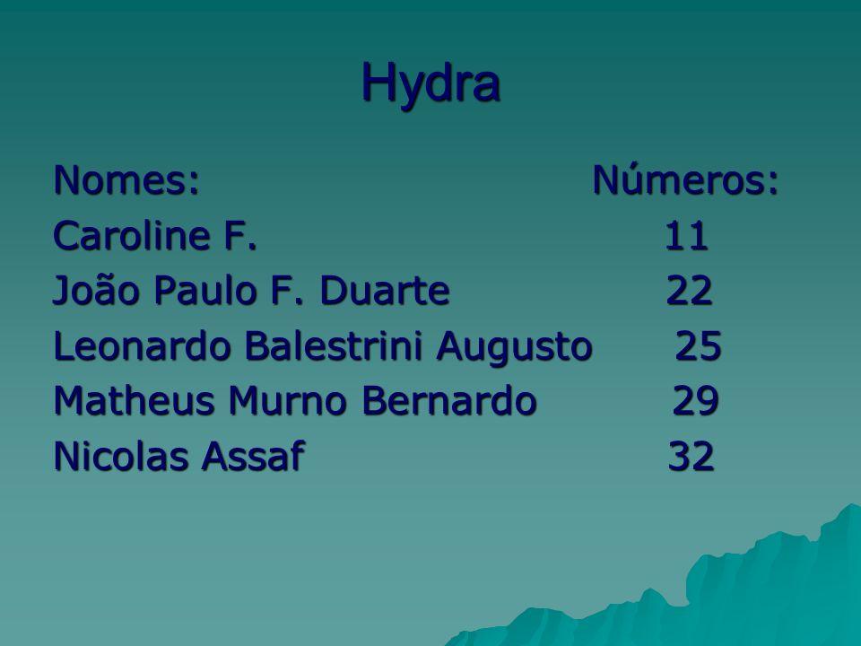 Hydra Nomes: Números: Caroline F. 11 João Paulo F.