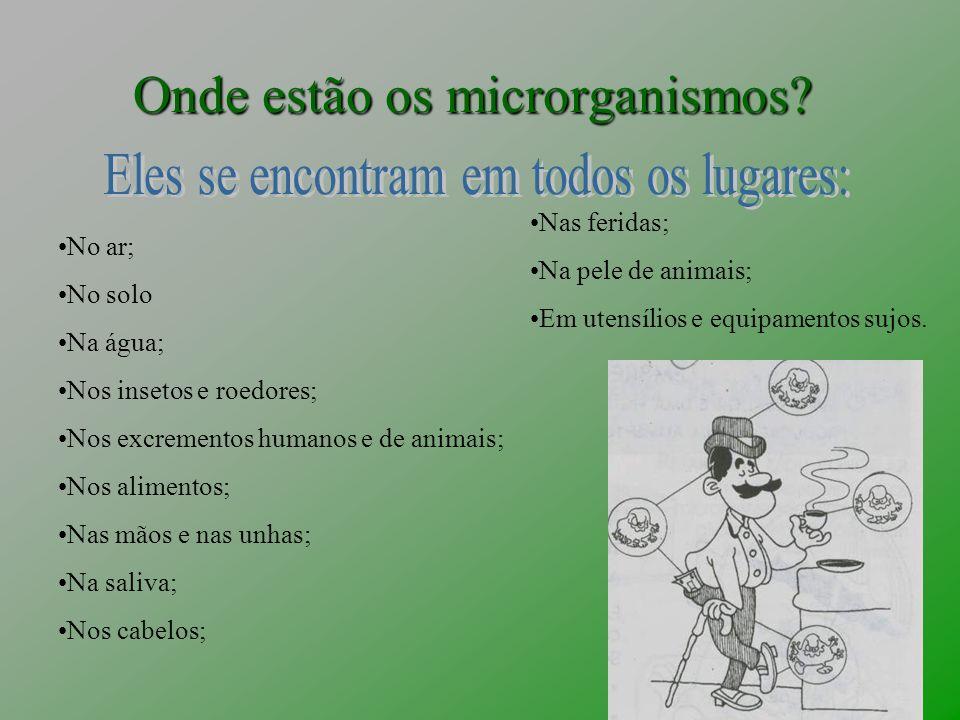 Onde estão os microrganismos? No ar; No solo Na água; Nos insetos e roedores; Nos excrementos humanos e de animais; Nos alimentos; Nas mãos e nas unha