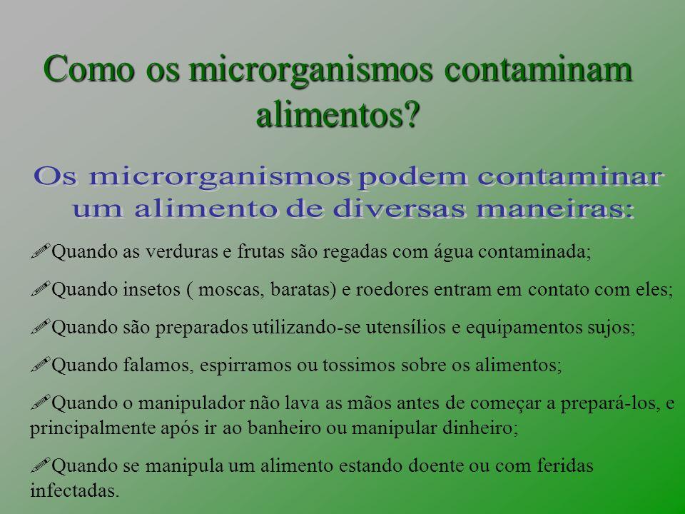 Como os microrganismos contaminam alimentos? Quando as verduras e frutas são regadas com água contaminada; Quando insetos ( moscas, baratas) e roedore