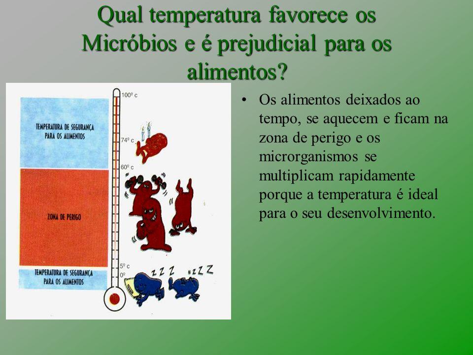 Qual temperatura favorece os Micróbios e é prejudicial para os alimentos? Os alimentos deixados ao tempo, se aquecem e ficam na zona de perigo e os mi