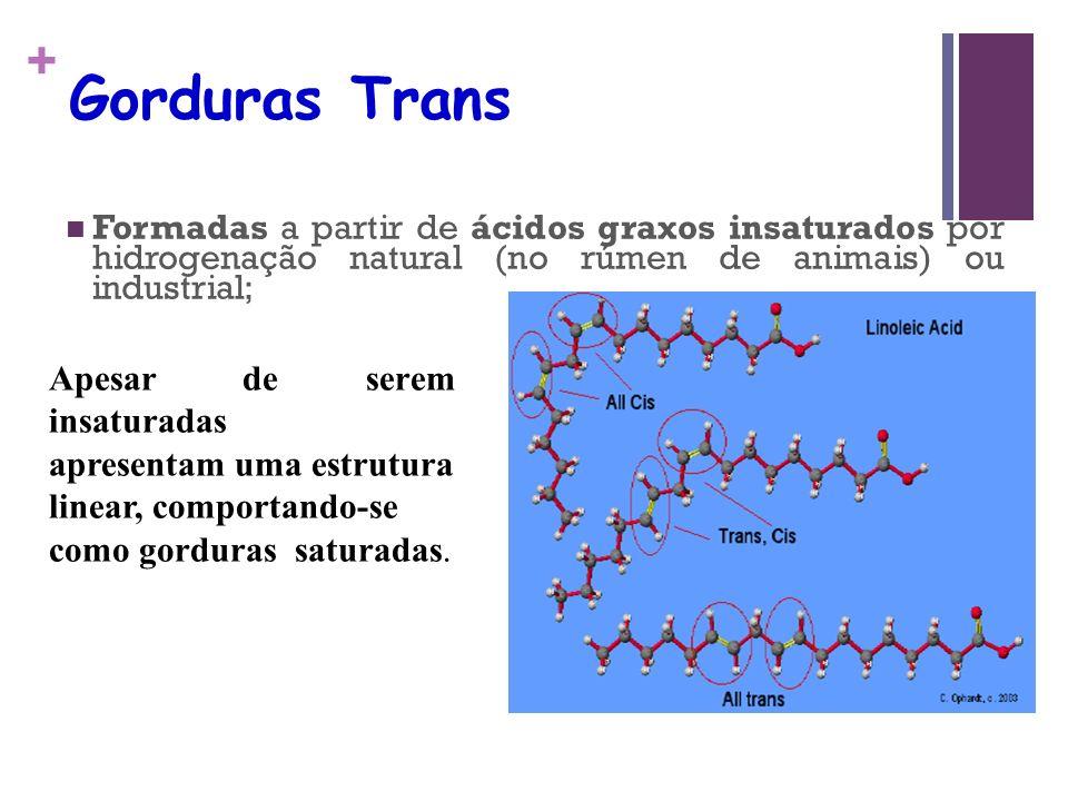 + Gorduras Trans Formadas a partir de ácidos graxos insaturados por hidrogenação natural (no rúmen de animais) ou industrial; Apesar de serem insaturadas apresentam uma estrutura linear, comportando-se como gorduras saturadas.