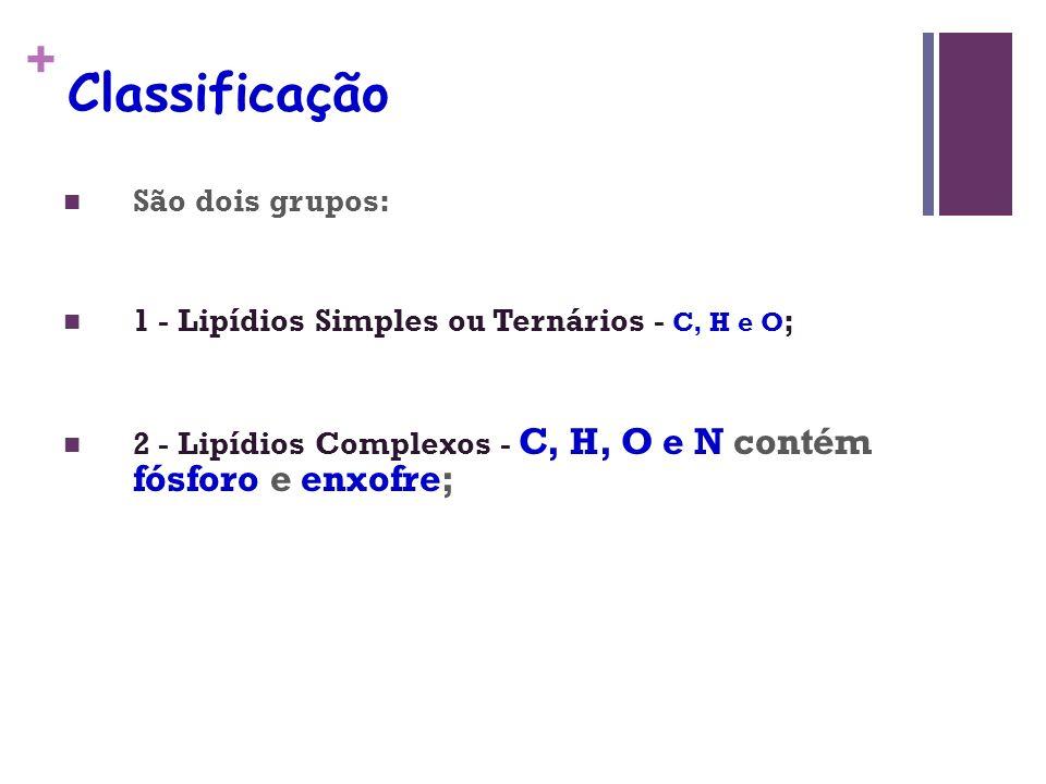 + Classificação São dois grupos: 1 - Lipídios Simples ou Ternários - C, H e O ; 2 - Lipídios Complexos - C, H, O e N contém fósforo e enxofre;