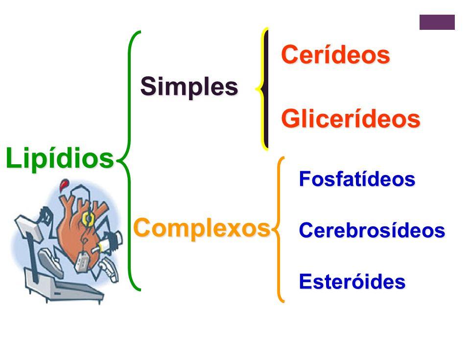 Lipídios Simples CerídeosGlicerídeos Complexos FosfatídeosCerebrosídeosEsteróides