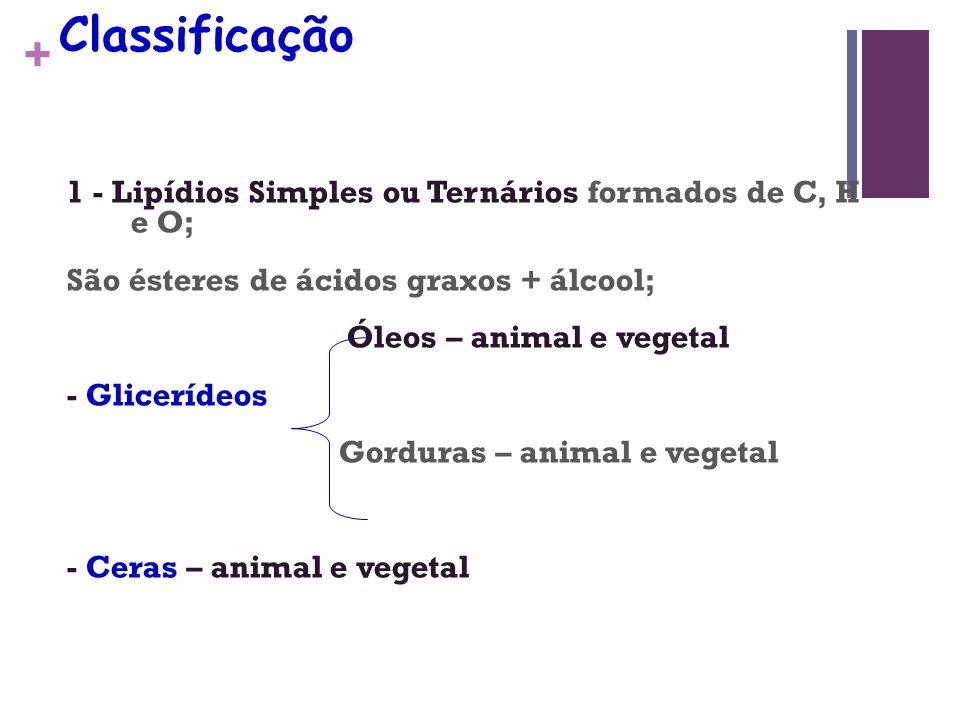 + Classificação 1 - Lipídios Simples ou Ternários formados de C, H e O; São ésteres de ácidos graxos + álcool; Óleos – animal e vegetal - Glicerídeos Gorduras – animal e vegetal - Ceras – animal e vegetal