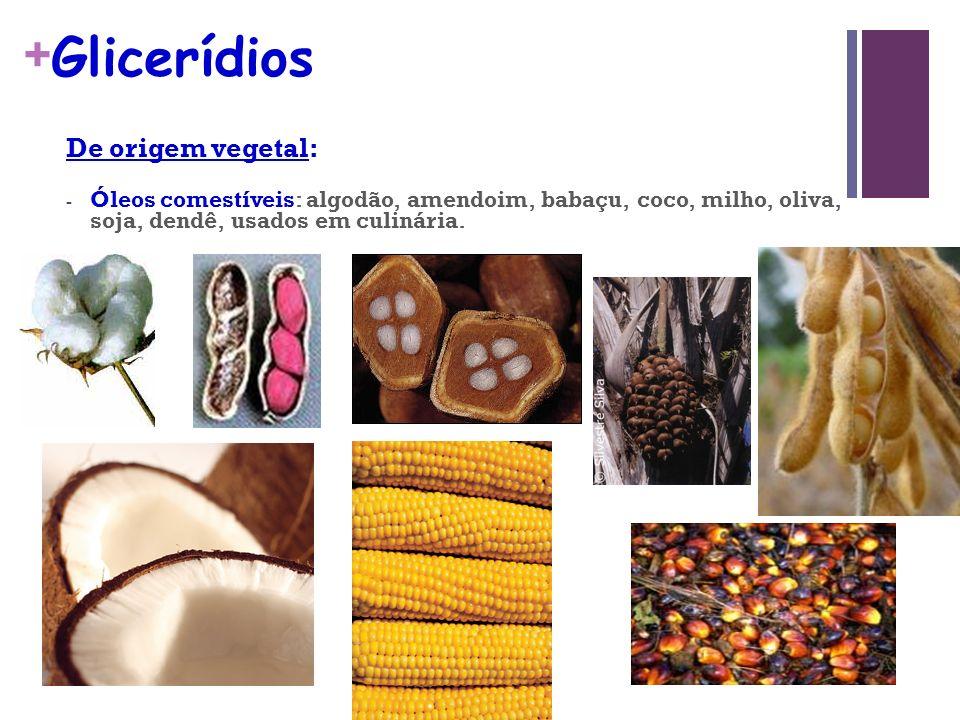 + Glicerídios De origem vegetal: - Óleos comestíveis: algodão, amendoim, babaçu, coco, milho, oliva, soja, dendê, usados em culinária.