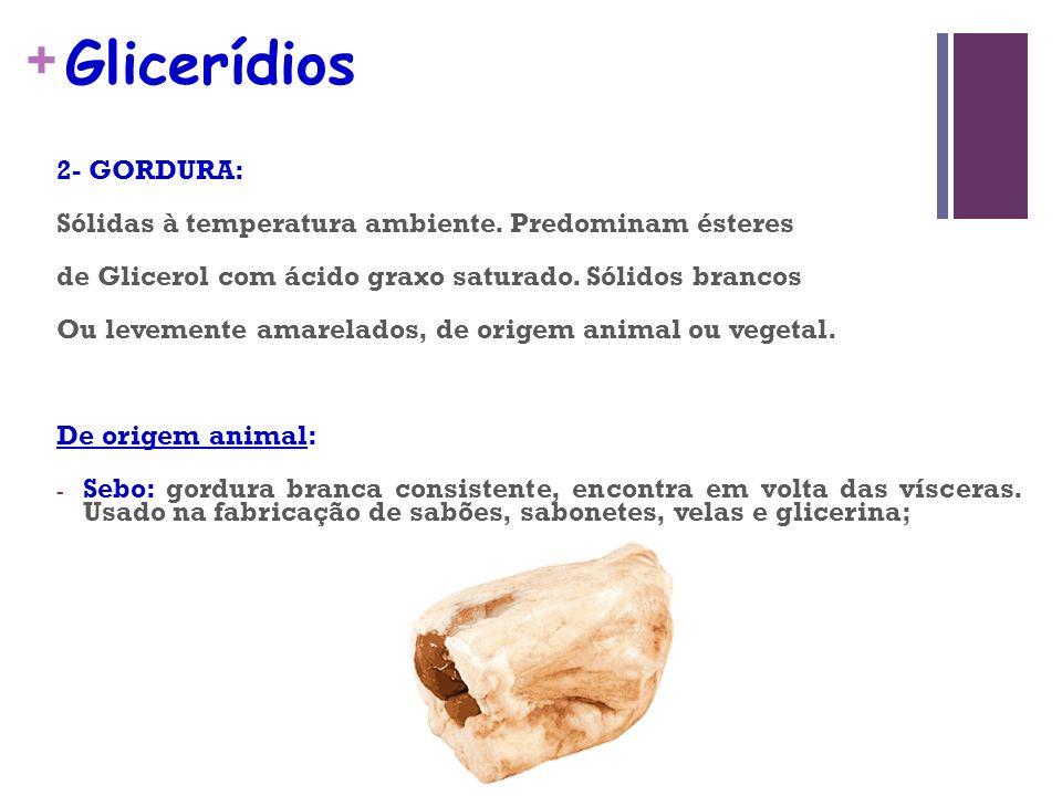 + Glicerídios 2- GORDURA: Sólidas à temperatura ambiente.