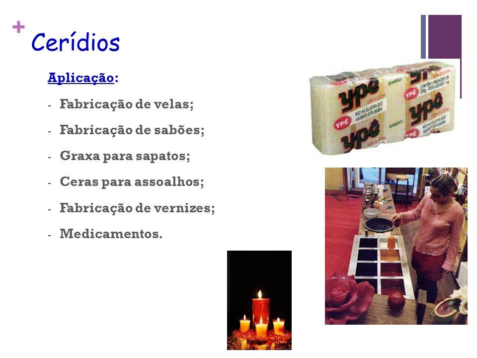 + Cerídios Aplicação: - Fabricação de velas; - Fabricação de sabões; - Graxa para sapatos; - Ceras para assoalhos; - Fabricação de vernizes; - Medicamentos.