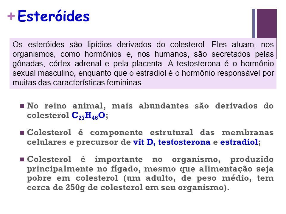 + Esteróides No reino animal, mais abundantes são derivados do colesterol C 27 H 46 O; Colesterol é componente estrutural das membranas celulares e precursor de vit D, testosterona e estradiol; Colesterol é importante no organismo, produzido principalmente no fígado, mesmo que alimentação seja pobre em colesterol (um adulto, de peso médio, tem cerca de 250g de colesterol em seu organismo).