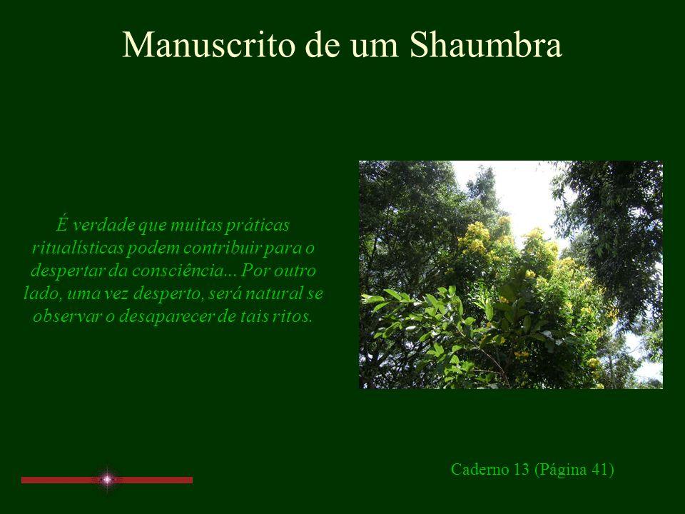 Manuscrito de um Shaumbra Caderno 13 Páginas 41, 43, 45, 47 www.manuscritoshaumbra.com JAN/11