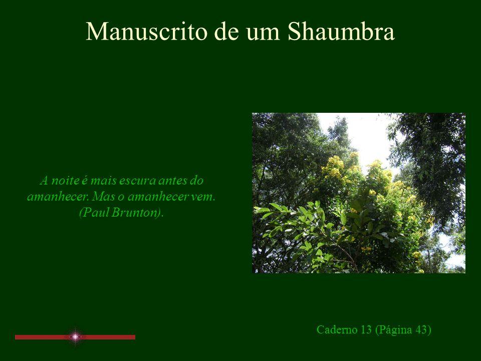 Manuscrito de um Shaumbra É verdade que muitas práticas ritualísticas podem contribuir para o despertar da consciência... Por outro lado, uma vez desp