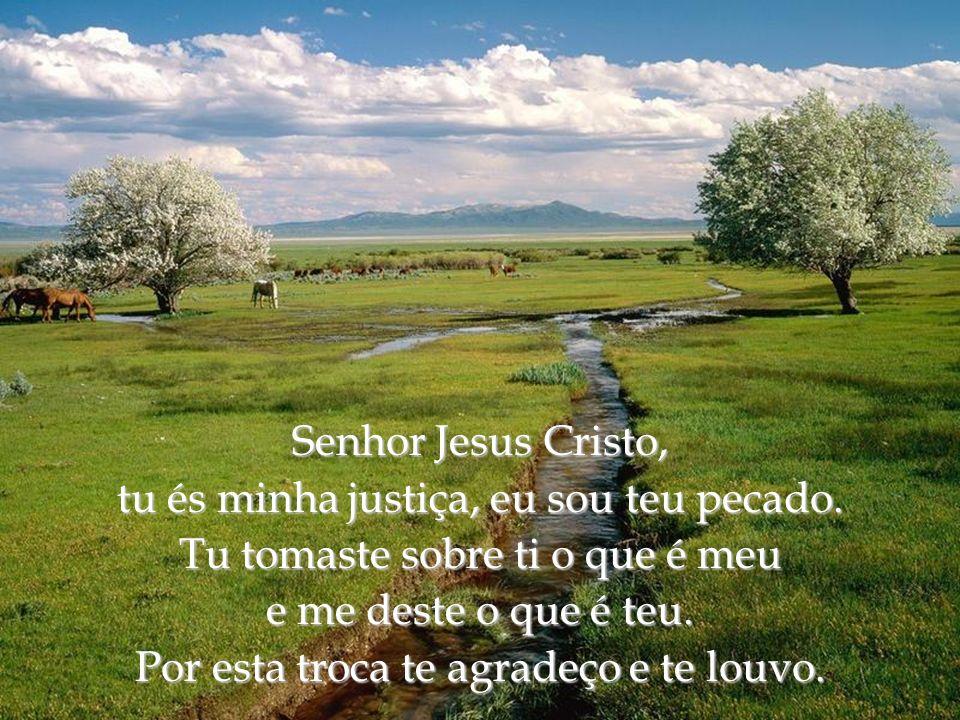 Eterno Deus, tudo o que sou, sei, posso e consigo, é tua criação. Nada possuo perante ti de que me possa gloriar, a não ser que tu sejas o meu Criador