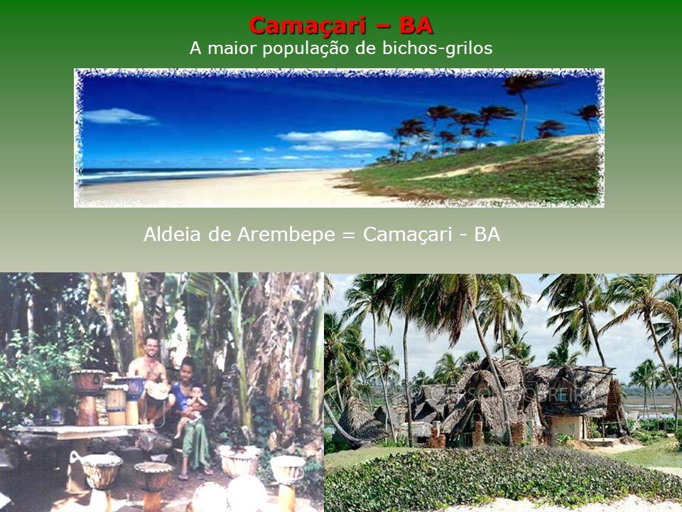 Camaçari Estilo de vida A maior população de bichos-grilos A aldeia de Arembepe, em Camaçari, litoral da Bahia, tem a maior concentração de hippies do