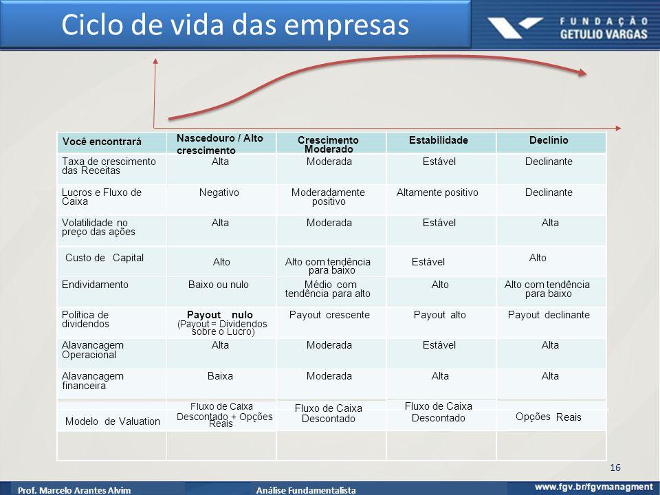 Prof. Marcelo Arantes AlvimAnálise Fundamentalista Ciclo de vida das empresas 16
