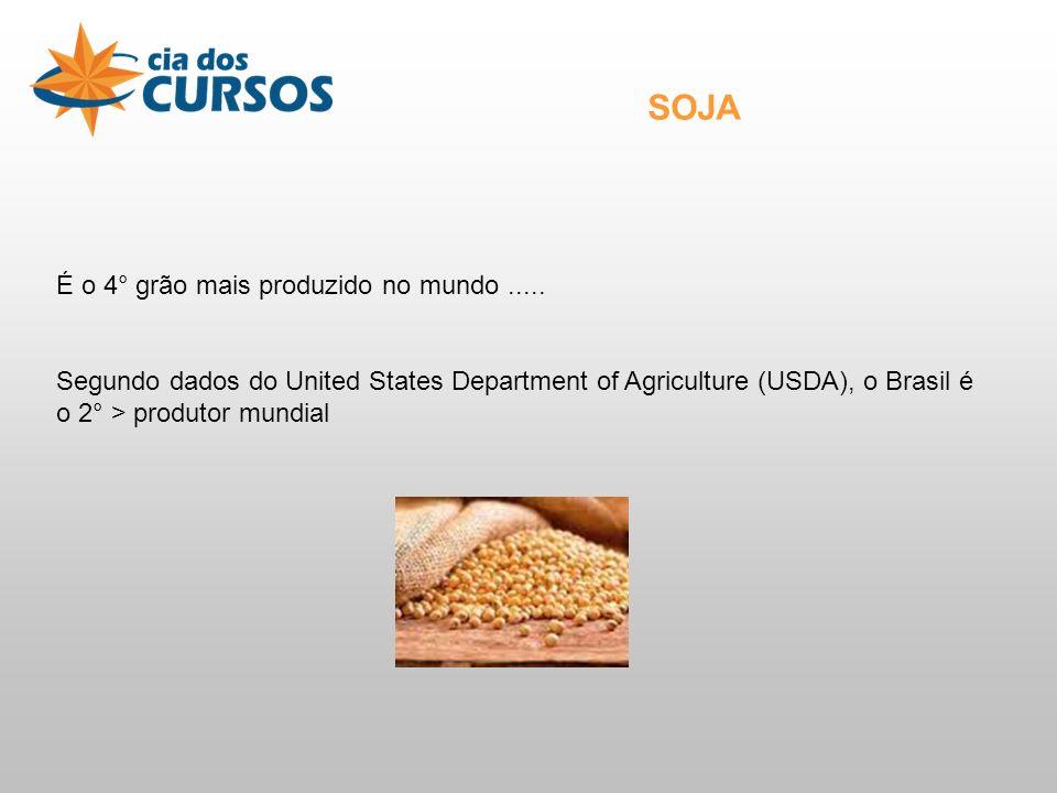 É o 4° grão mais produzido no mundo.....