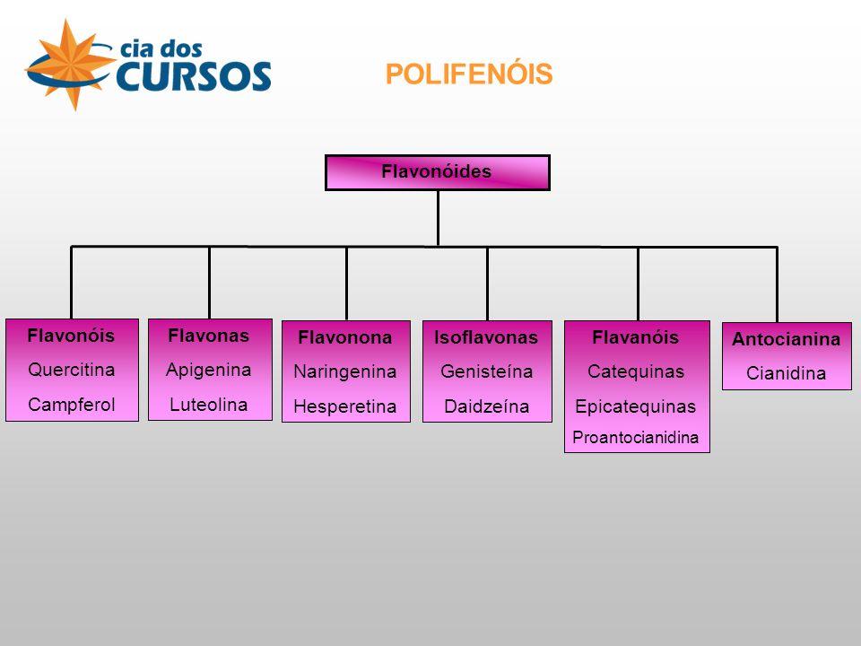 Durante as etapas do processamento desses produtos da soja pode haver PERDA de algumas isoflavonas e também mudança no seu perfil.