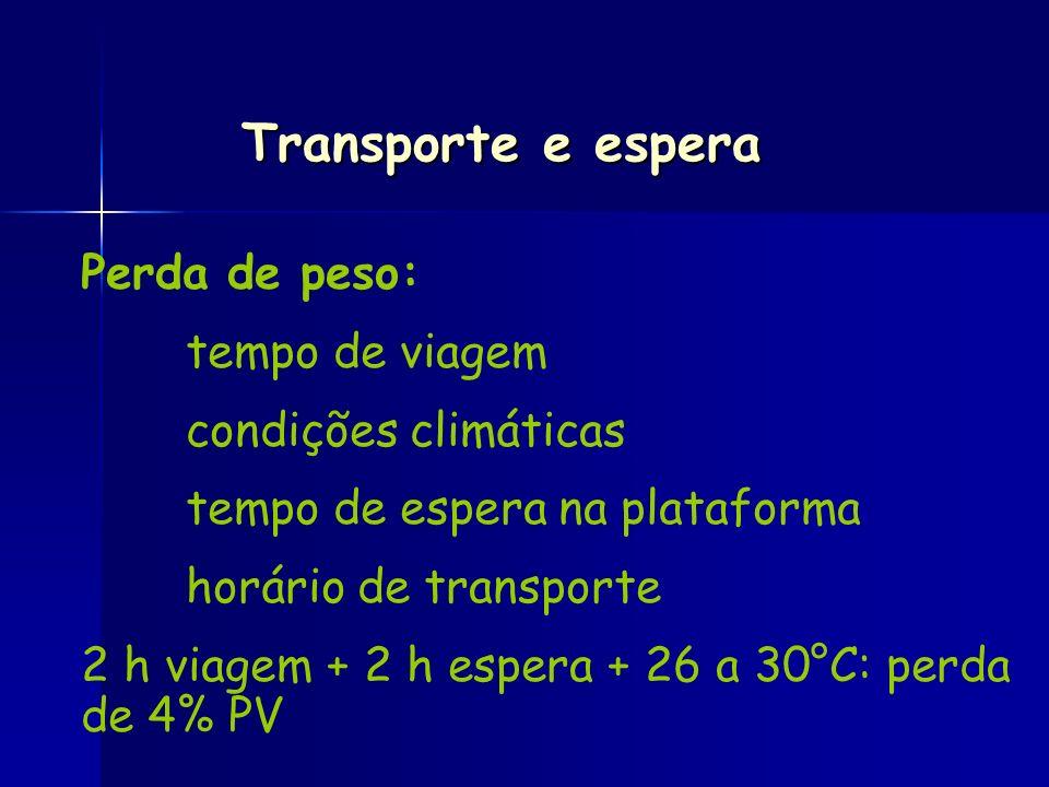 Transporte e espera Perda de peso: tempo de viagem condições climáticas tempo de espera na plataforma horário de transporte 2 h viagem + 2 h espera +