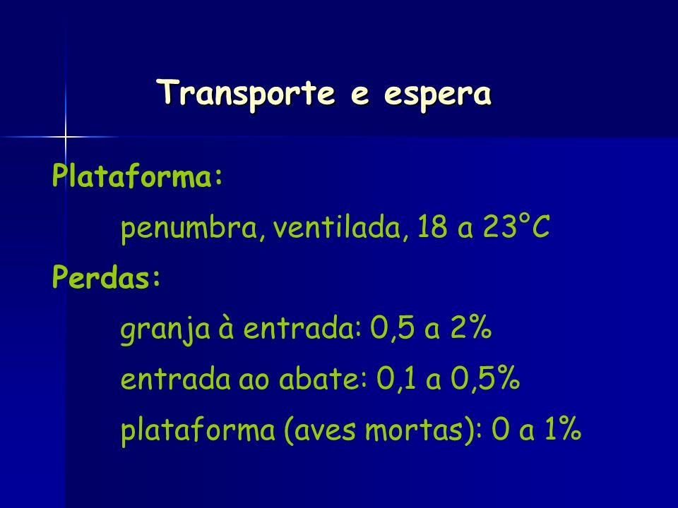 Plataforma: penumbra, ventilada, 18 a 23°C Perdas: granja à entrada: 0,5 a 2% entrada ao abate: 0,1 a 0,5% plataforma (aves mortas): 0 a 1% Transporte
