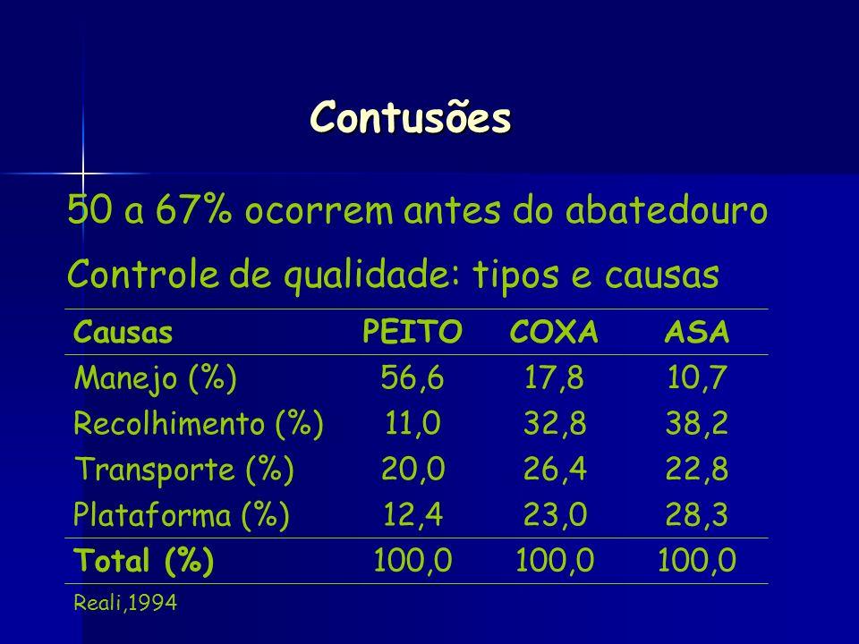 50 a 67% ocorrem antes do abatedouro Controle de qualidade: tipos e causas Contusões 100,0 Total (%) 28,323,012,4Plataforma (%) 22,826,420,0Transporte