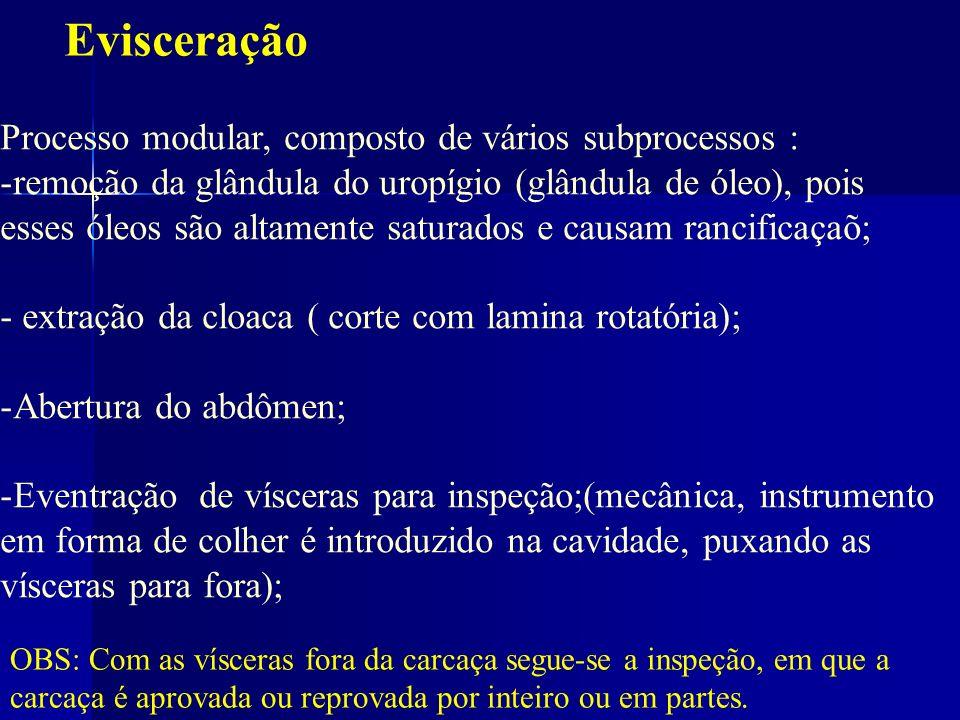 Evisceração Processo modular, composto de vários subprocessos : -remoção da glândula do uropígio (glândula de óleo), pois esses óleos são altamente sa