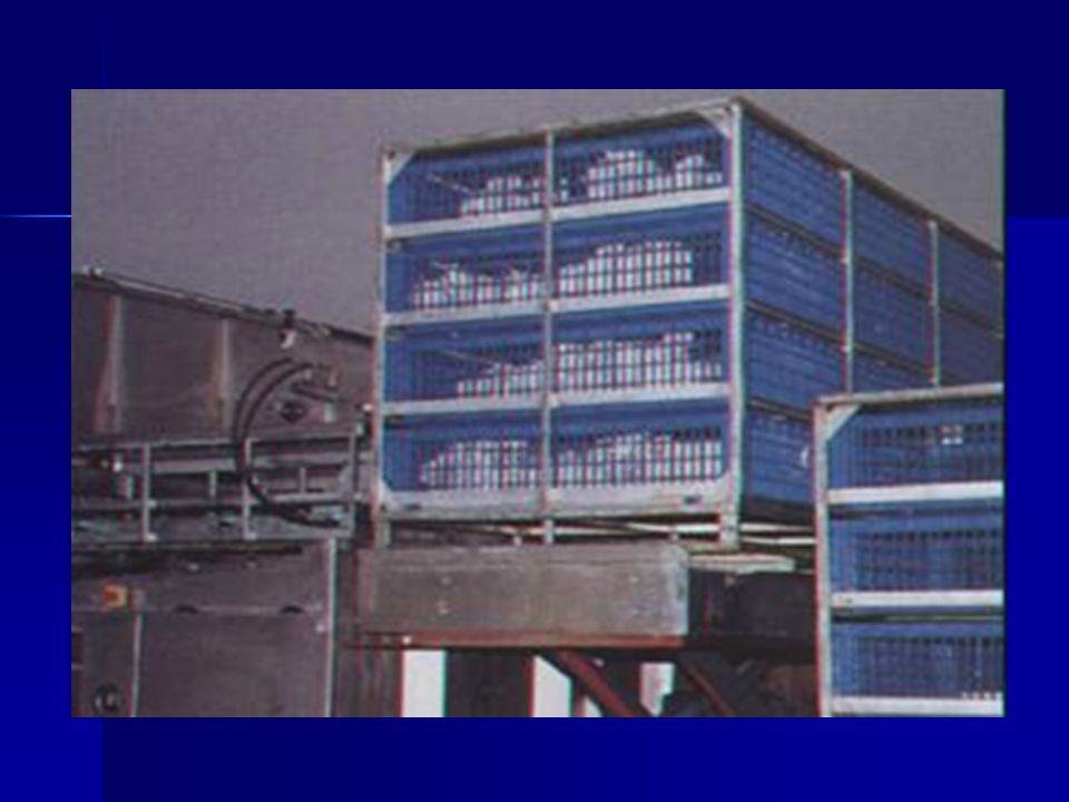 Plataforma: penumbra, ventilada, 18 a 23°C Perdas: granja à entrada: 0,5 a 2% entrada ao abate: 0,1 a 0,5% plataforma (aves mortas): 0 a 1% Transporte e espera