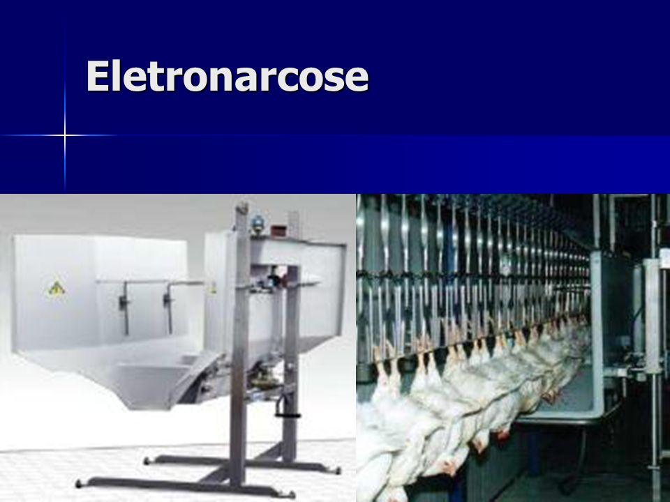 Eletronarcose