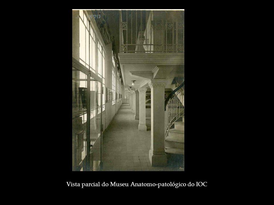 Vista parcial do Museu Anatomo-patológico do IOC