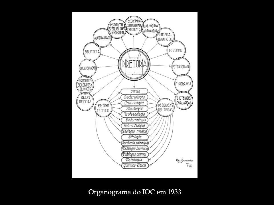 Organograma do IOC em 1933