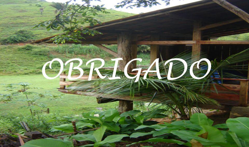 TURISMO RURALJUNHO - 2008 OBRIGADO