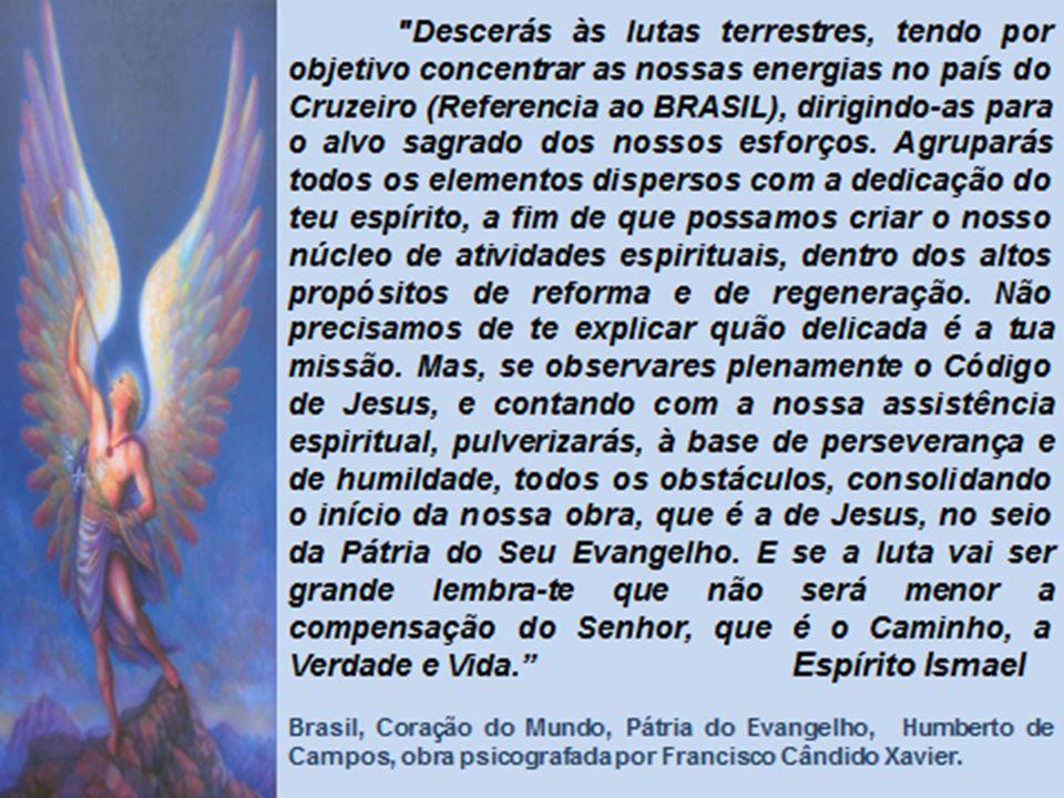 Militância Espírita – 1875 – 44 anos – o despertamento Conheceu a Doutrina Espírita quando do lançamento da tradução em língua portuguesa de O Livro dos Espíritos ( em 1875), através de um exemplar que lhe foi oferecido com dedicatória pelo seu tradutor, Dr.
