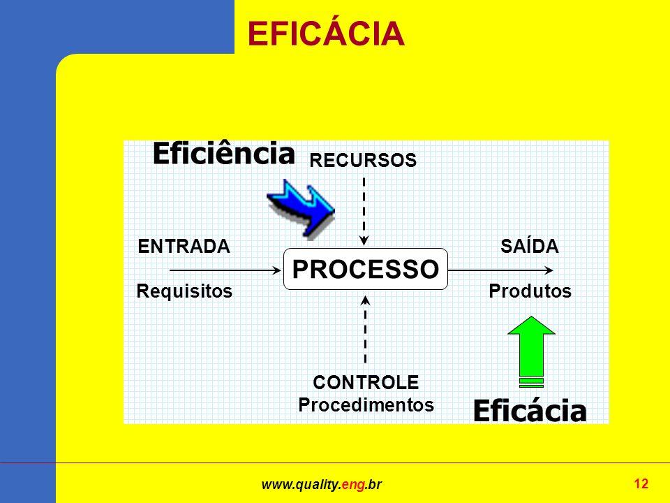 www.quality.eng.br 12 PROCESSO ENTRADA Requisitos SAÍDA Produtos CONTROLE Procedimentos RECURSOS Eficácia Eficiência EFICÁCIA
