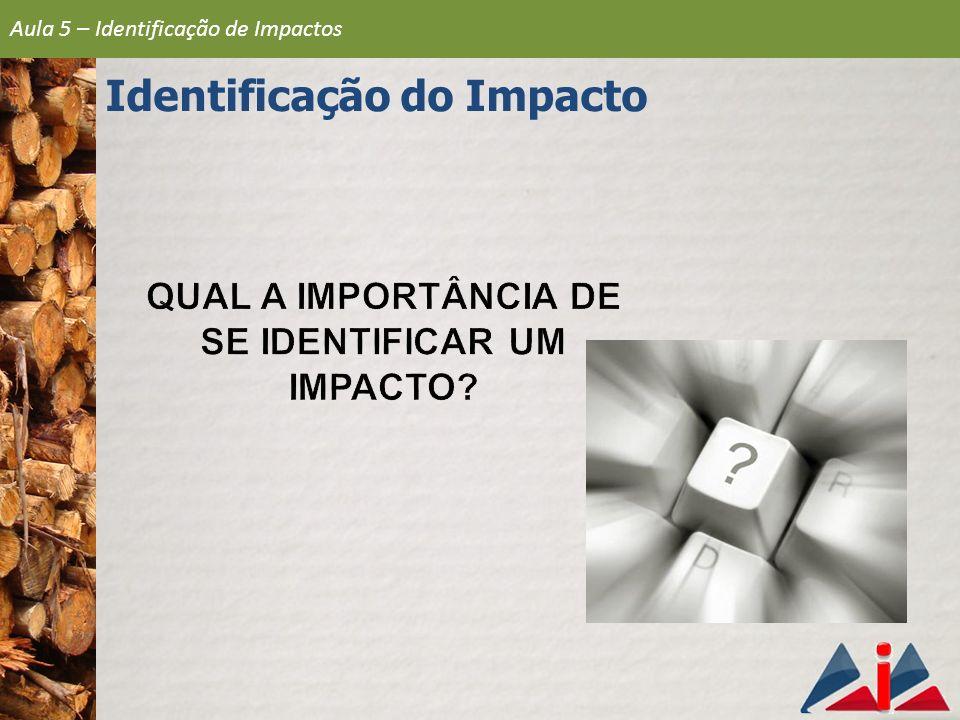 Aula 5 – Identificação de Impactos Identificação do Impacto