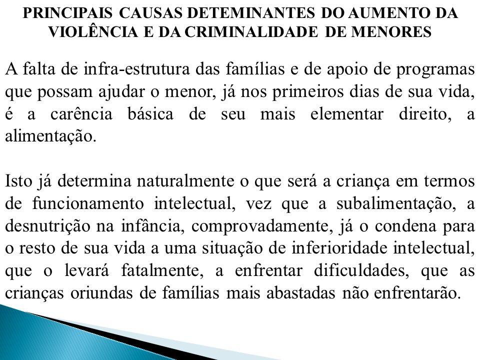 PRINCIPAIS CAUSAS DETEMINANTES DO AUMENTO DA VIOLÊNCIA E DA CRIMINALIDADE DE MENORES A falta de infra-estrutura das famílias e de apoio de programas q