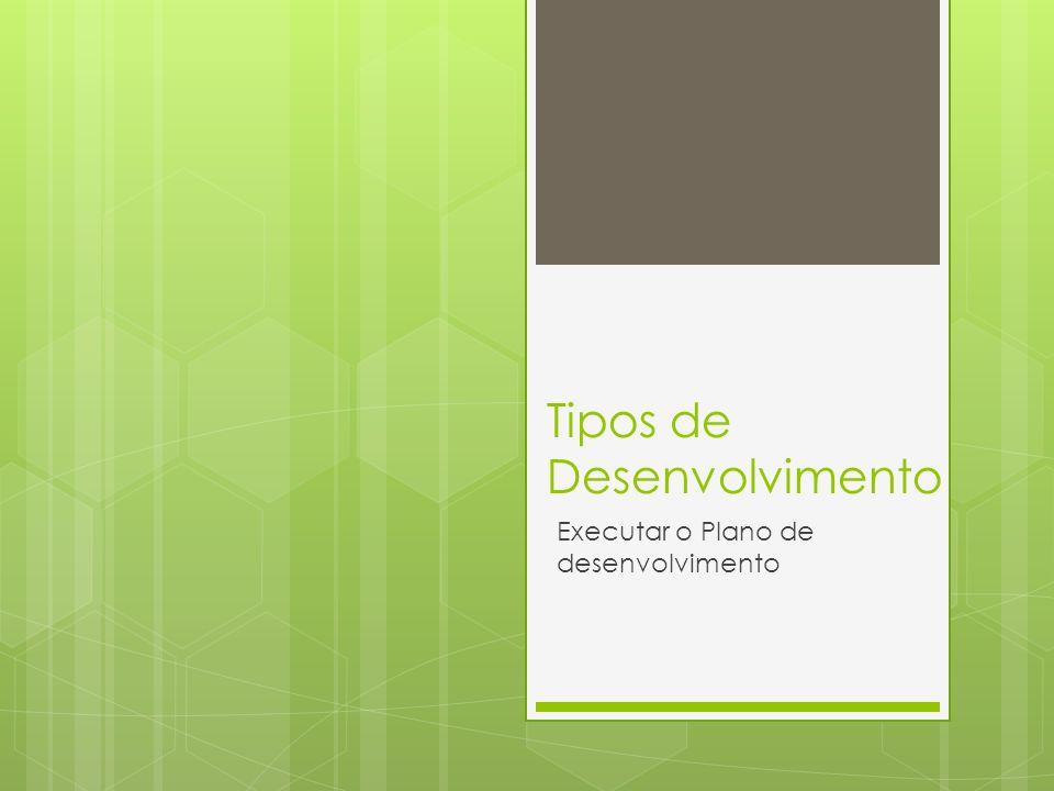 Tipos de Desenvolvimento Executar o Plano de desenvolvimento