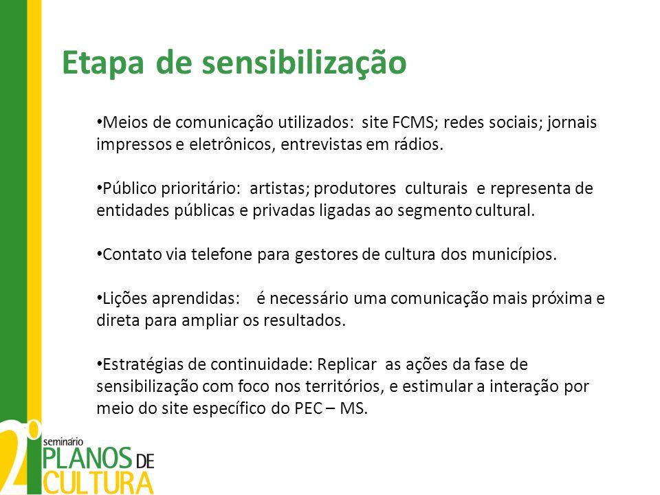Meios de comunicação utilizados: site FCMS; redes sociais; jornais impressos e eletrônicos, entrevistas em rádios. Público prioritário: artistas; prod