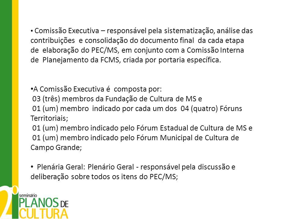 Comissão Executiva – responsável pela sistematização, análise das contribuições e consolidação do documento final da cada etapa de elaboração do PEC/M