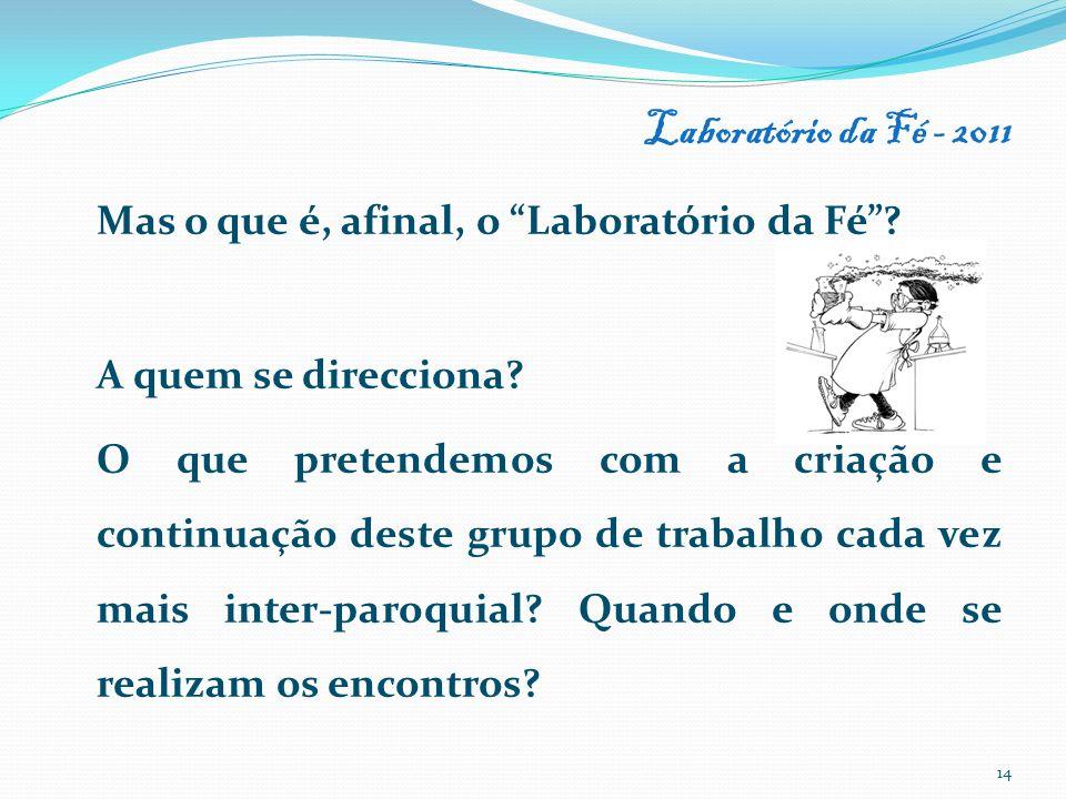 Laboratório da Fé - 2011 Mas o que é, afinal, o Laboratório da Fé? A quem se direcciona? O que pretendemos com a criação e continuação deste grupo de