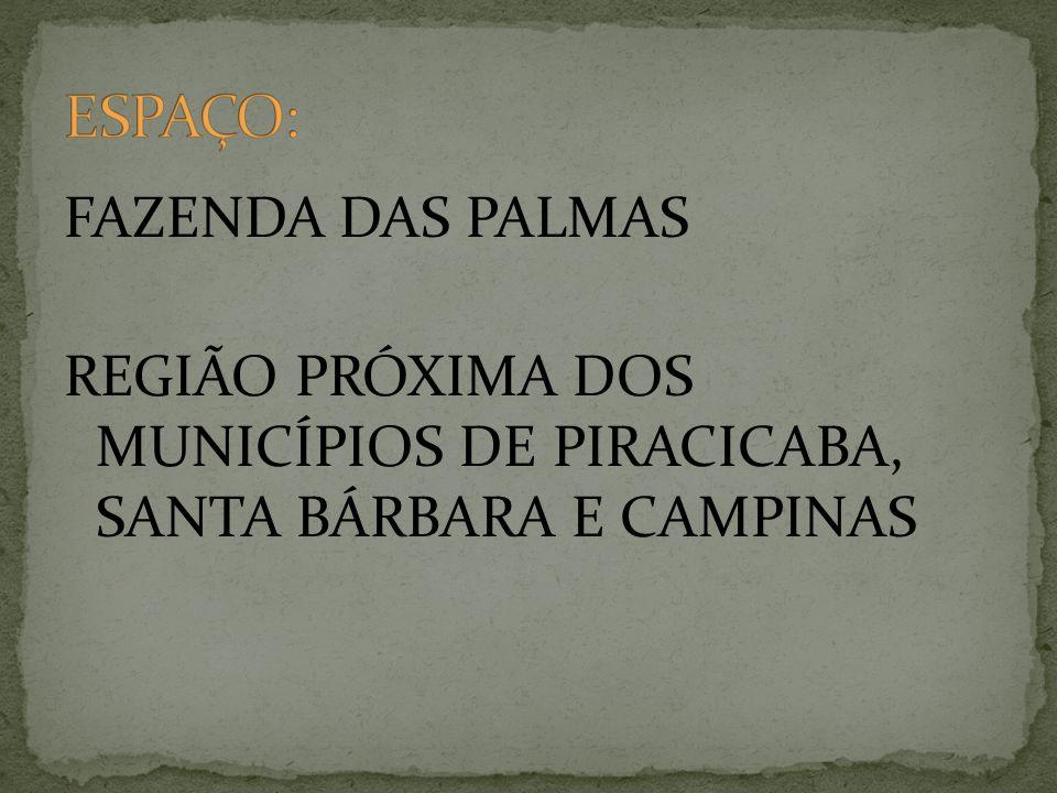 FAZENDA DAS PALMAS REGIÃO PRÓXIMA DOS MUNICÍPIOS DE PIRACICABA, SANTA BÁRBARA E CAMPINAS