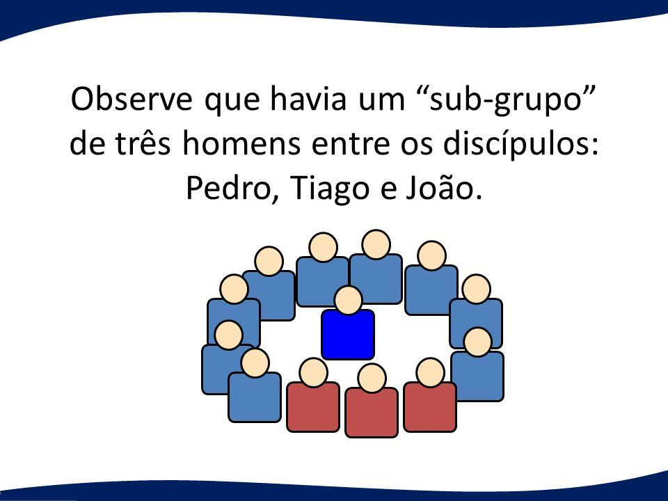 Observe que havia um sub-grupo de três homens entre os discípulos: Pedro, Tiago e João.