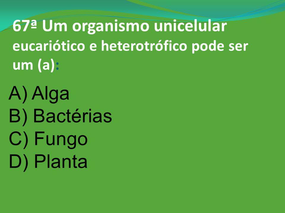 66ª De onde veio o mosquito da dengue? A) Bolívia B) America C) África D) Paraguai