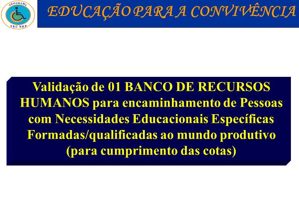 Validação de 01 BANCO DE RECURSOS HUMANOS para encaminhamento de Pessoas com Necessidades Educacionais Específicas Formadas/qualificadas ao mundo prod