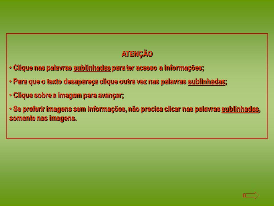 ATENÇÃO Clique nas palavras sublinhadas para ter acesso a informações; Clique nas palavras sublinhadas para ter acesso a informações; Para que o texto desapareça clique outra vez nas palavras sublinhadas; Para que o texto desapareça clique outra vez nas palavras sublinhadas; Clique sobre a imagem para avançar; Clique sobre a imagem para avançar; Se preferir imagens sem informações, não precisa clicar nas palavras sublinhadas, somente nas imagens.
