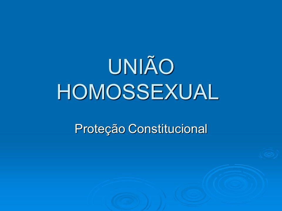 UNIÃO HOMOSSEXUAL Proteção Constitucional