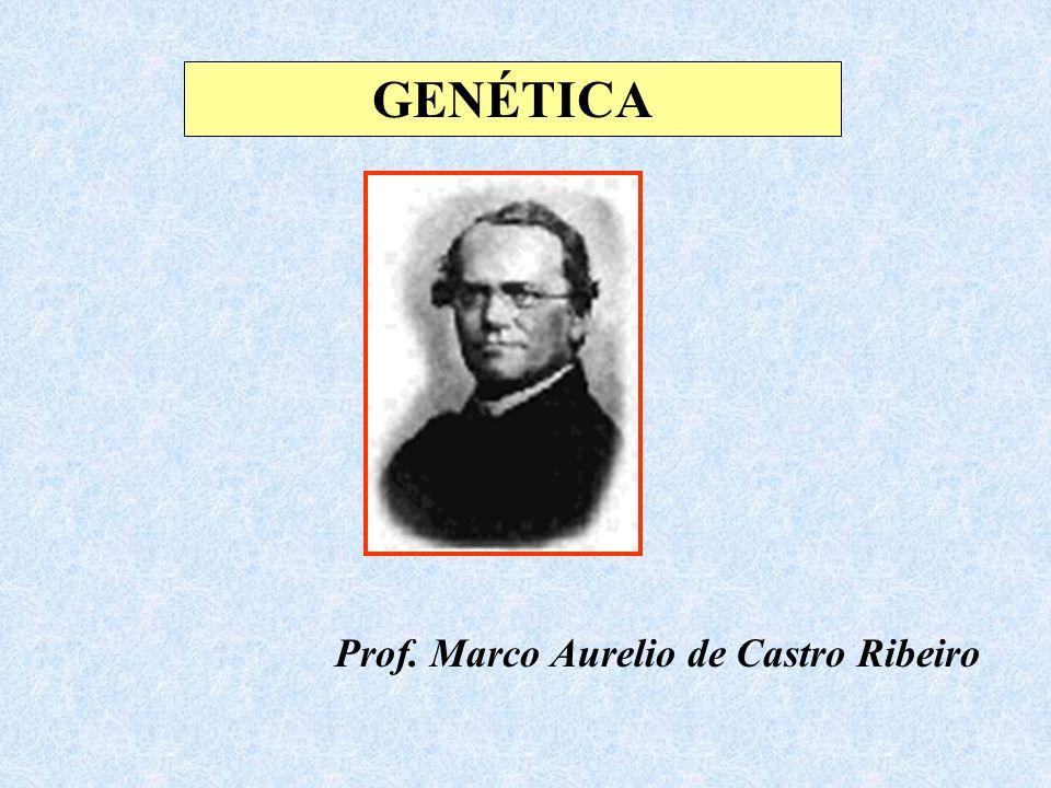 GENÉTICA Prof. Marco Aurelio de Castro Ribeiro