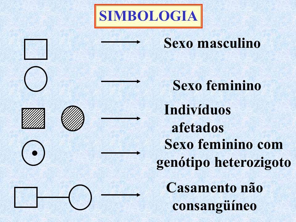 Sexo masculino Sexo feminino SIMBOLOGIA Indivíduos afetados Sexo feminino com genótipo heterozigoto Casamento não consangüíneo