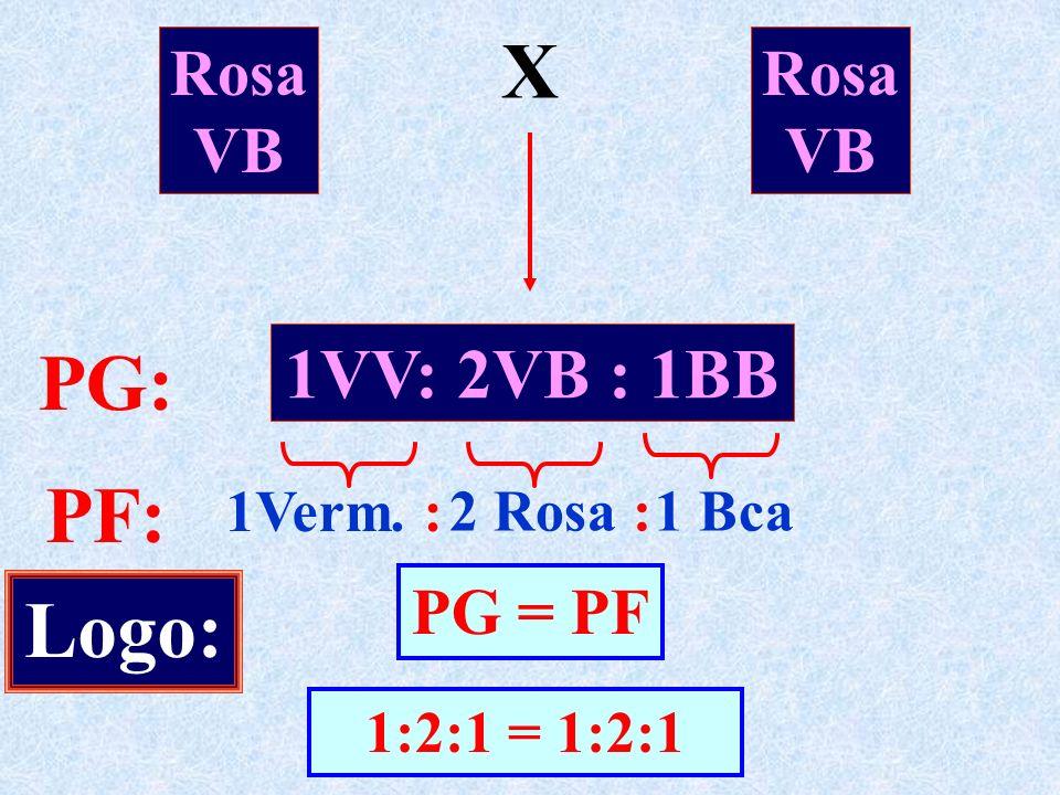 Rosa VB X Rosa VB 1VV: 2VB : 1BB PG: PF: 1Verm. : 2 Rosa :1 Bca Logo: PG = PF 1:2:1 = 1:2:1