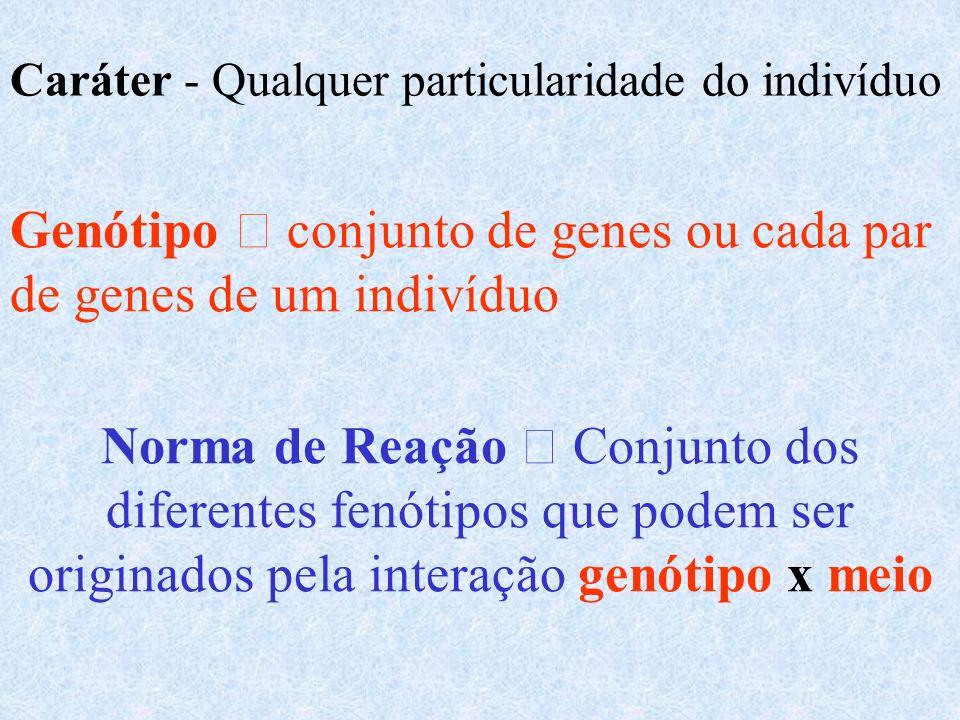Caráter - Qualquer particularidade do indivíduo Genótipo conjunto de genes ou cada par de genes de um indivíduo Norma de Reação Conjunto dos diferentes fenótipos que podem ser originados pela interação genótipo x meio