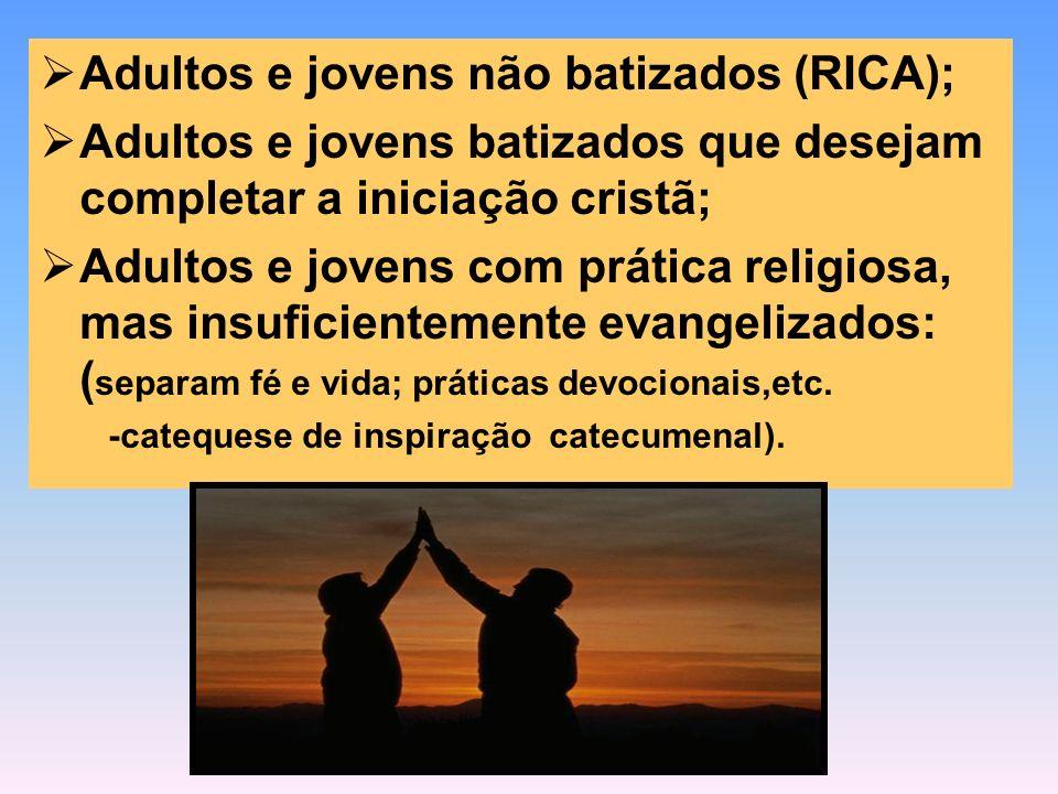 Adultos e jovens não batizados (RICA); Adultos e jovens batizados que desejam completar a iniciação cristã; Adultos e jovens com prática religiosa, ma