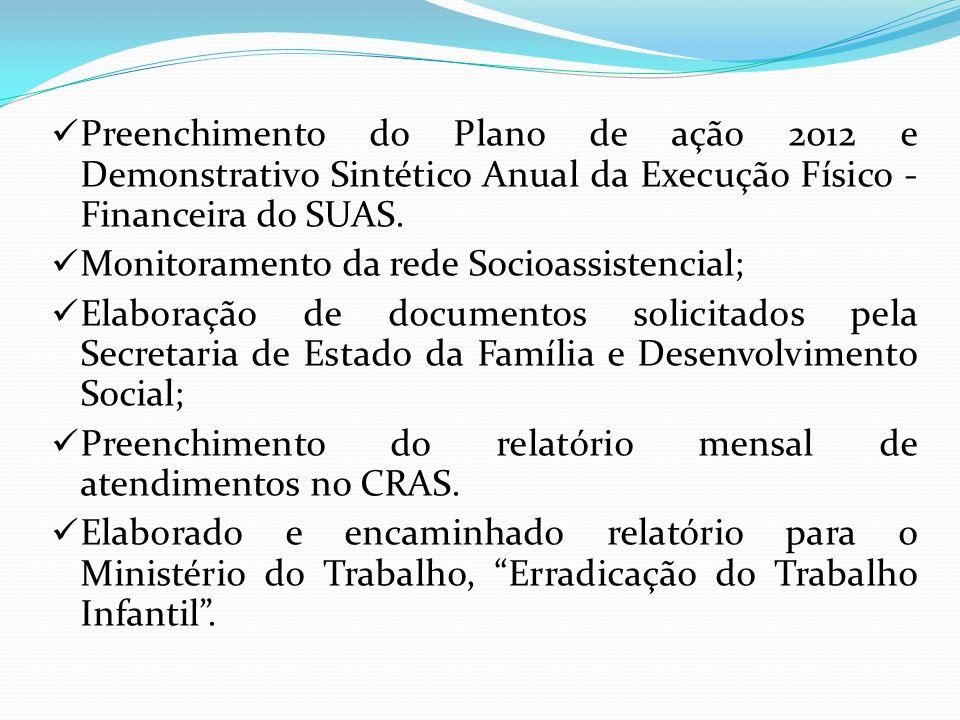 Preenchimento do Plano de ação 2012 e Demonstrativo Sintético Anual da Execução Físico - Financeira do SUAS. Monitoramento da rede Socioassistencial;